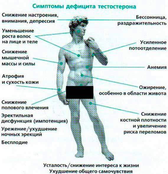 Признаки снижения уровня тестостерона у мужчин при климаксе