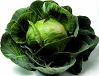 Капусту легко выращивать у себя на даче или в деревне, благодаря чему мужчине не придется постоянно покупать данный продукт в магазине