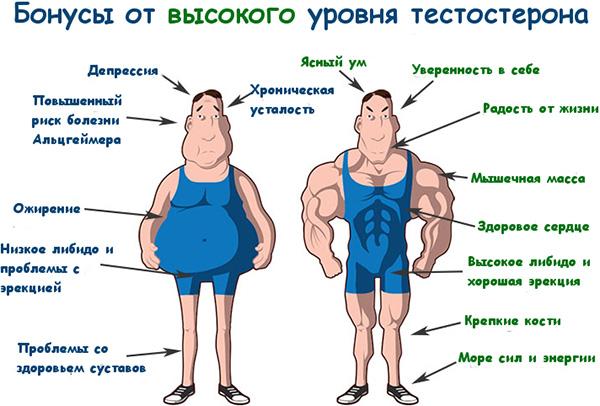 у парней в юном возрасте очень хороший уровень тестостерона, и у них нет риска появления всех этих симптомов мужского климакса